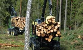 Pieaugot cenām, palielinās koksnes pārdošanas apjomi no valsts mežiem