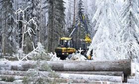 Kā atrast līdzsvaru starp dabas aizsardzību un saimniecisko darbību mežā?