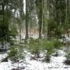 Lai meža īpašnieki būtu ieinteresēti dabas vērtību pareizā apsaimniekošanā