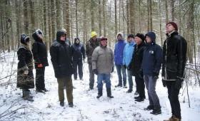 ☂ Kas jāņem vērā, slēdzot līgumu par augošu koku pārdošanu