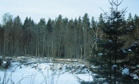 Nepieciešams vienošanās process par saimniekošanu dabas aizsardzības interesēs