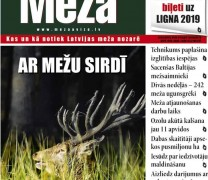 ☂ Meža Avīze Nr. 287 (05.2019.)