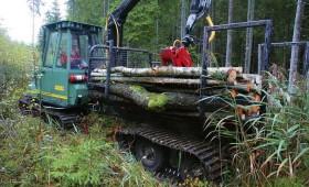 Konkurss darbu veikšanai cirsmās uz zemas nestspējas augsnēm