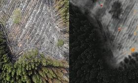 Modernās tehnoloģijas meža ugunsapsardzībā