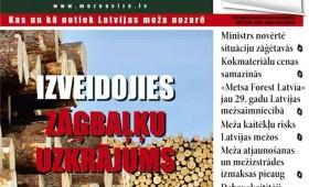 ☂ Meža Avīze Nr. 289 (07.2019.)