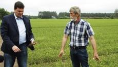 AS «Latvijas valsts meži» plāno ražot 68 miljonus meža stādu gadā