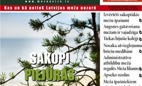 ☂ Meža Avīze Nr. 291 (09.2019.)
