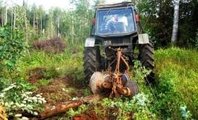 ☂ Augsnes gatavošana mežam ir vajadzīga