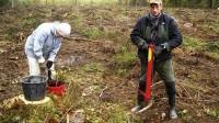 ☂ Stādīt mežu var ne tikai pavasarī