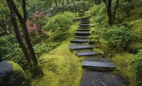 Japāņu dārzi atpūtai dabā