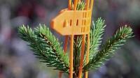 Rudens – jauno kociņu aizsardzības laiks