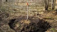 ☂ Meža inventarizāciju var neiekļaut reģistrā nesakārtotu īpašumu robežu dēļ