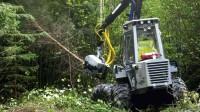 ☂ Strādā meža kopšanā ar mazo harvesteru