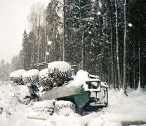 Meža Avīzes Fotokonkurss – 8