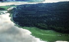 Brīvpieejas informācija par meža teritorijām – atbalsts mežsaimniecībai un atpūtai