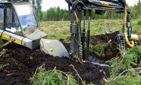 Ilgstošais lietus ieviesis korekcijas mežizstrādes darbu organizācijā