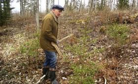 Savu mežu apsaimnieko rūpīgi