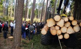 Jaunajiem meža nozares speciālistiem iespēja stažēties Briselē
