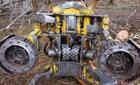 LVM pēta baļķu kvalitātes uzlabošanas iespējas mežizstrādes darbos