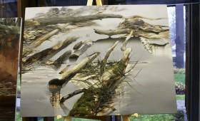 Meža augošā loma Latvijas tautsaimniecībā – mākslas jaunradē