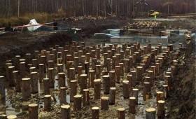 LVM pētīs koka pāļu izturību meža autoceļu būvniecībai