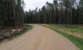 Rudens – meža ceļu būvdarbu pieņemšanas laiks