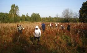 Interesantākā skolas diena – zinību apgūšana mežā